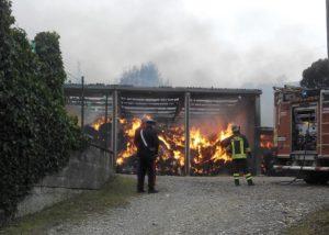 incendio maneggio 300x214 ROGO IN UN MANEGGIO, MUOIONO VENTI CAVALLI