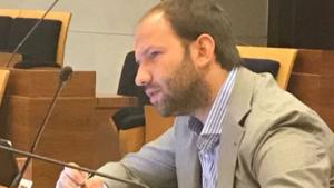 zinzi 300x169 EMERGENZA INCENDI: IN COMMISSIONE TERRA DEI FUOCHI LASSESSORE BONAVITACOLA