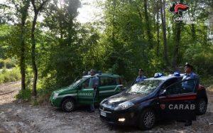 Forestale 3 300x187 SGOMINATO TRAFFICO ILLECITO DI RIFIUTI IN CAMPANIA, 8 INDAGATI E 22 AUTOCARRI SEQUESTRATI