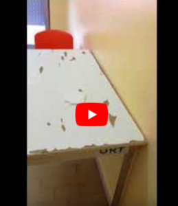 OSPEDALE VIDEO 259x300 VIDEO   OSPEDALE DI MADDALONI...2° PUNTATA