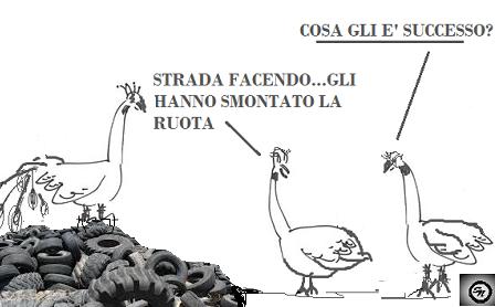 """STRADA FACENDO 18.1.18 IL PAVONE """"MOROSO"""" FA LA RUOTA. SINDACO… CI FACCIA IL PIACERE…"""