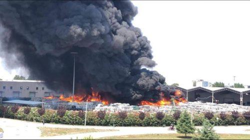 incendio 2 e1532599496159 INCENDIO TRA CAIVANO E PASCAROLA, MESSINA: IL TERZO IN SETTE GIORNI...BISOGNA AGIRE ORA!