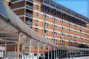 ospedale OSPEDALE, IL MEMORIALE DELLA DOMENICA... 9