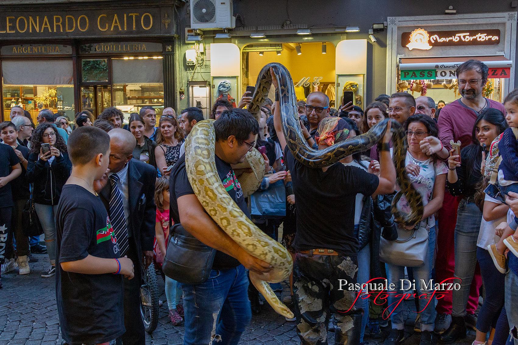 IMG 6921 A NAPOLI IN VIA TOLEDO LA SECONDA EDIZIONE DEL NAPOLI BUSKERS FESTIVAL, LA FOTOGALLERY