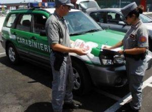 controlli CC Forestale 1 300x221 IRREGOLARITA IN AZIENDA CASEARIA, MULTA AL PROPRIETARIO