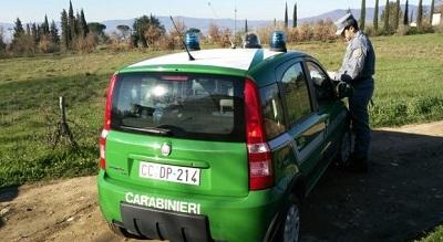 controlli Carabinieri Forestale ISERNIA: TRASPORTO DI PRODOTTI ALIMENTARI SENZA IDONEE CONDIZIONI IGIENICO SANITARIE