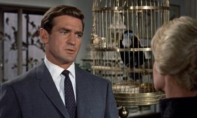 """rod taylor thebirds 620x330 """"GLI UCCELLI"""": L'INCUBO A CIELO APERTO DI ALFRED HITCHCOCK"""