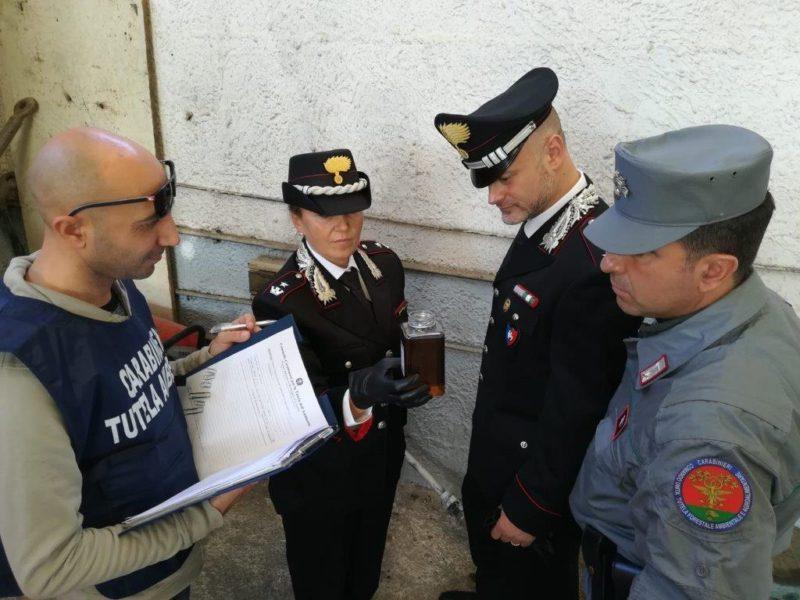 IMG 20190131 WA0005 POZZI INQUINATI, DEL MONACO (M5S): SIAMO DEI CRIMINALI
