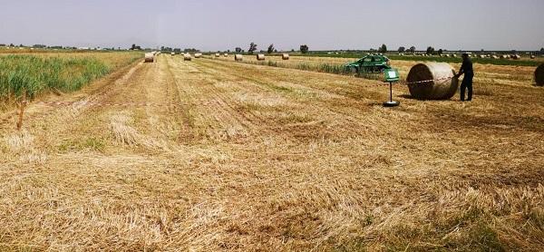 IMG 20190612 WA0008 VILLA LITERNO: LA FORESTALE SEQUESTRA ALTRI DUE FONDI AGRICOLI