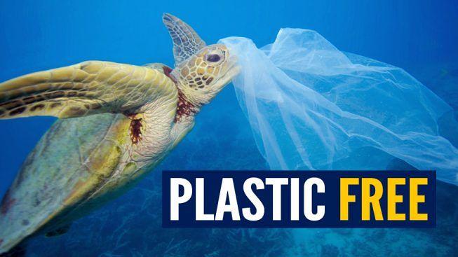 Plastic Free 653x367 SANTA MARIA CAPUA VETERE: PLASTIC FREE CHALLENGE, VIA LIBERA DEL CONSIGLIO COMUNALE
