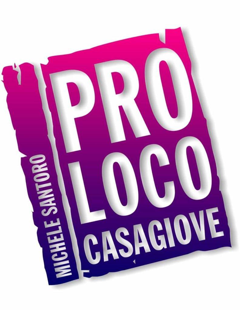 pic pro loco 791x1024 CASAGIOVE, IL PROF. LUIGI GRANATELLO NOMINATO NUOVO  PRESIDENTE DELLA PRO LOCO MICHELE SANTORO DI CASAGIOVE
