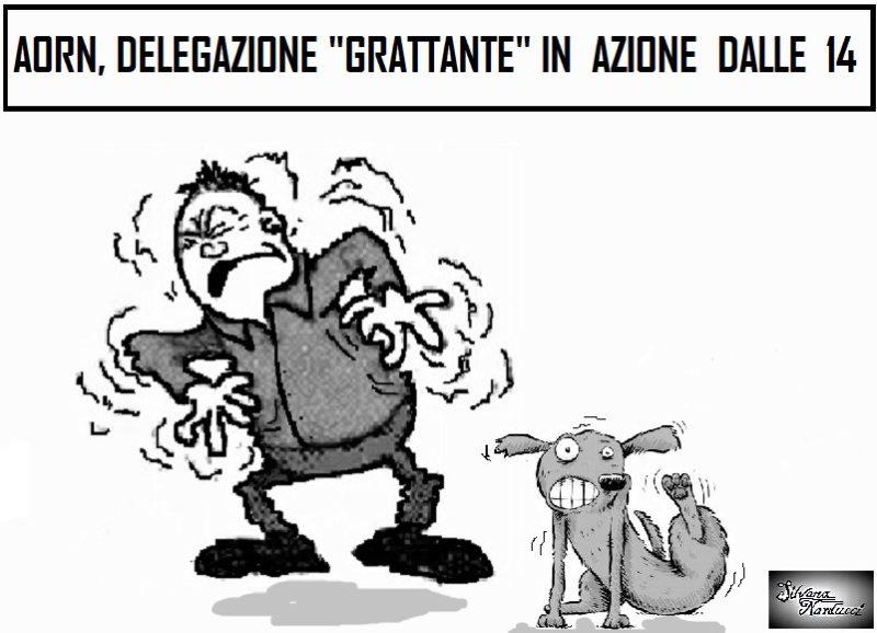 prurito vignetta LA VIGNETTA...