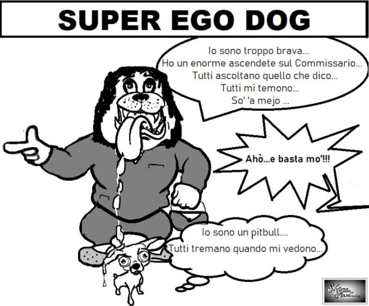 SUPER EGO DOG scaled OSPEDALE, SINDACATI, INDENNITÀ & PRONOSTICI…