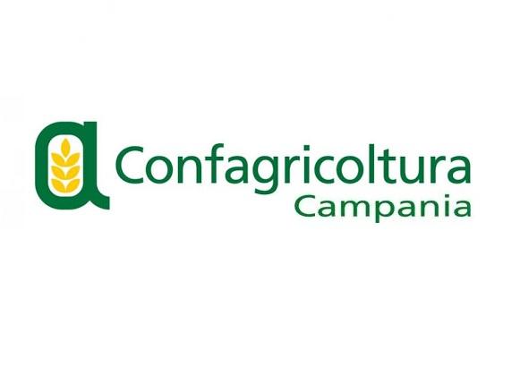 """Confagricoltura Campania AGRITURIST CAMPANIA: """"AGRITURISMI A RISCHIO CHIUSURA, UN DURO COLPO PER LE AREE INTERNE E LA FASCIA COSTIERA"""""""