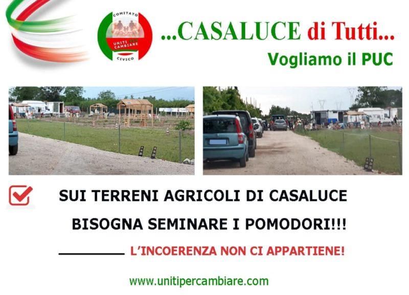 CUTILLO scaled CASALUCE, LA DENUNCIA UPC: SENZA PUC IN ATTO USO IMPROPRIO DEI CAMPI AGRICOLI