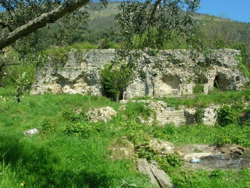 villa romana arienzo scaled ARIENZO, SCANDALO: DEGRADO E INCURIA NELLA VILLA ROMANA DI COCCEIO. M5S: FRANCESCHINI INTERVENGA CON URGENZA