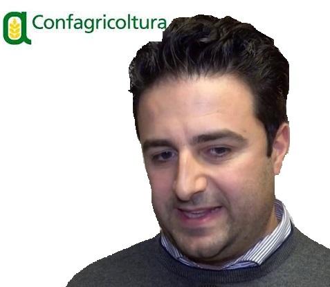 %name CONFAGRICOLTURA CAMPANIA INTERVIENE SULLOLIO CAMPANIA IGP
