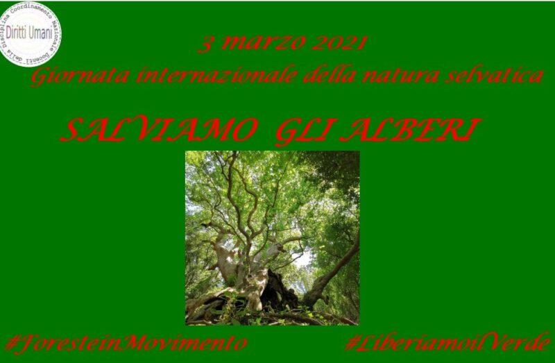 Locandina Giornata internazionale della natura selvatica 2021 scaled CNDDU CELEBRA IL WORLD WILDLIFE DAY IL 3 MARZO