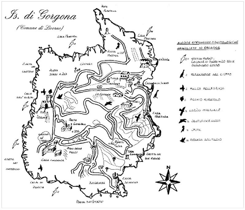 Isola di Gorgona DIARIO DI GORGONA