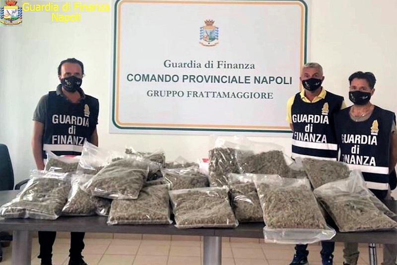 foto 1 1 1 DROGA SOTTOVUOTO: LA GdF DI NAPOLI SCOPRE 22 KG DI MARIJUANA IN UN CENTRO DI SPEDIZIONE