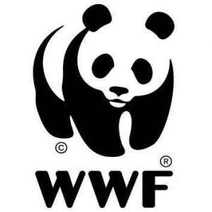 wwf 300x300 WWF ITALIA SCRIVE A MATTARELLA SUL PARCO NAZIONALE DEL MATESE